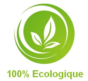 Logoecologique